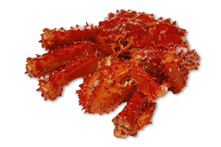 Caranguejos rei, também chamado de caranguejos de pedra, são uma superfamília de caranguejo- crustáceos encontrados principalmente em mares frios. Devido ao seu grande tamanho e do sabor de sua carne,